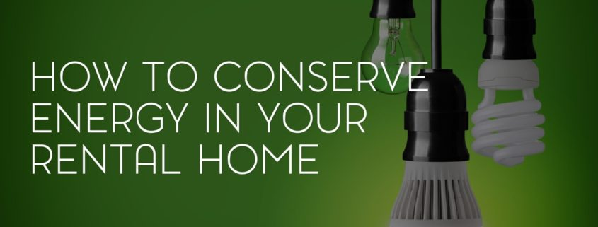 How to Conserve Energy in Your Rental Home